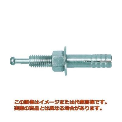 ユニカ ルーティアンカー Cタイプ(三価クロメート) C−860 C860 50本