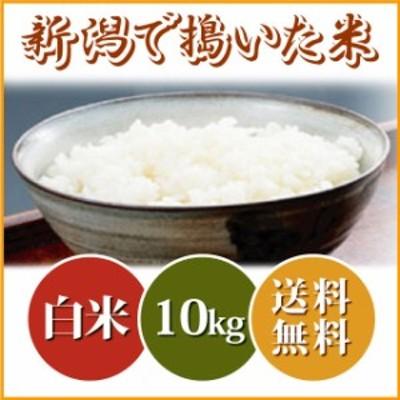 【小粒だからお買い得】新潟で搗いた米 10kg (10キロ×1袋) 送料無料 沖縄へは2,200円 ブレンド米 お米 10kg 安い 米 10キロ 送料無料