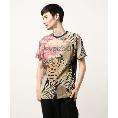tシャツ Tシャツ Tシャツ半袖 CASTOR