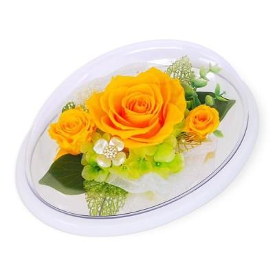 プリザーブドフラワー「カノン オーバルドーム ブルー」(電報なし) お祝い 花 ギフト プレゼント 結婚式 誕生日 父の日 叙勲 褒章 バラ