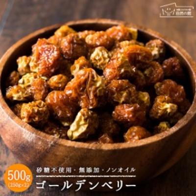 ゴールデンベリー 砂糖不使用 500g(250g×2) ドライフルーツ 送料無料 ほおずき スーパーフード  非常食 保存食