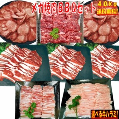 牛タン 塩タン 薄切り 4kg 焼き肉 バーベキュー 食材 BBQ 肉 焼肉セット 牛カルビ 牛バラ 牛ハラミ 豚バラ 豚カルビ 豚トロ バーベキュー
