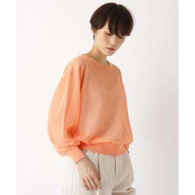 (AG by aquagirl/エージーバイアクアガール)シアービスコースクルーネックニット/レディース ライトオレンジ(066)