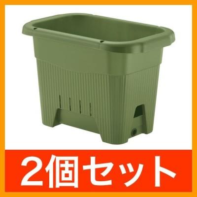 リッチェル プランター 水ラク菜園上手45型 グリーン 2個セット   植木鉢 貯水スペース プラスチック製 家庭菜園 鉢