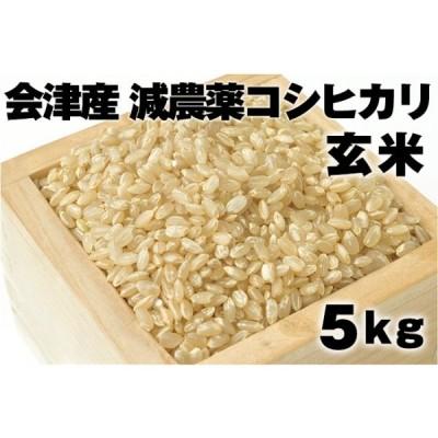 会津産 減農薬コシヒカリ 玄米 (5kg)