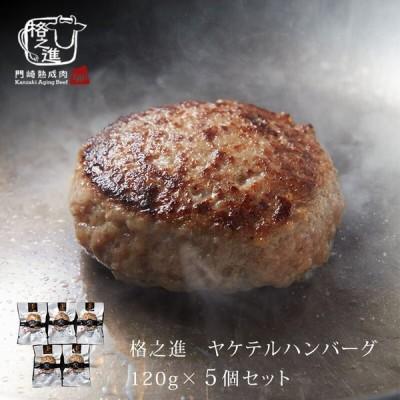 ハンバーグ 冷凍 湯煎 格之進 ヤケテル金格ハンバーグ 5個セット 取り寄せ