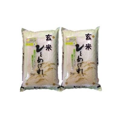 【玄米】 福島県会津産ひとめぼれ10kg (5kg×2袋) 令和2年産 石抜き処理済「ふくしまプライド。体感キャンペーン(お米)」