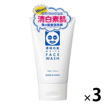 透明白肌 ホワイトフェイスウォッシュ (洗顔フォーム) 100g 石澤研究所 ×3個