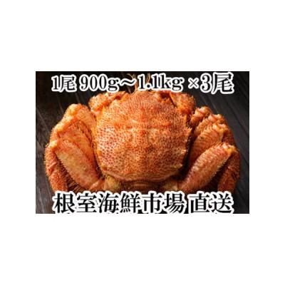 ふるさと納税 根室海鮮市場<直送>ボイル毛がに900g〜1.1kg×3尾 D-28015 北海道根室市