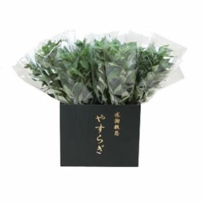 【納期目安:1週間】CMLF-1491299 ニューホンコン造花 シキミ(ラップ入・展示箱付)グリーン30本入 142501 (CMLF1491299)