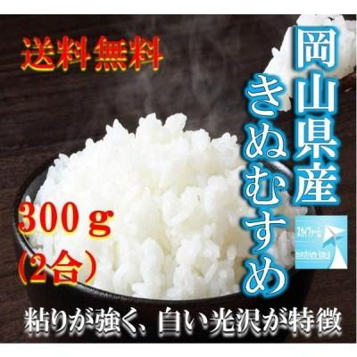 米 ポイント消化 送料無料 お試し お米 食品 安い 1kg以下 令和2年産 岡山県産きぬむすめ 300g(2合)1袋 メール便 プレミアム価格