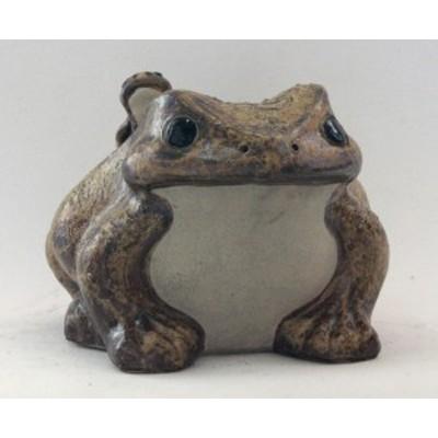 蛙(子2匹)12号  信楽焼 陶器 置物 かえる  彩り屋_