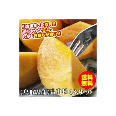 柿 かき 訳あり 富有柿 ふゆうかき 5kgセット 送料無料 鳥取県産 常温