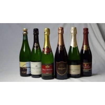 世界の赤×白×ロゼスパークリングワイン6本セット(トーゾフラゴリーノ赤 シャルル白 モンサラセミセコ白  ポールブレハン白 ロジ