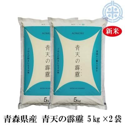 新米 令和2年産 青天の霹靂 (へきれき) 10kg (5kg×2袋) 白米 【真空パック対応】 送料無料