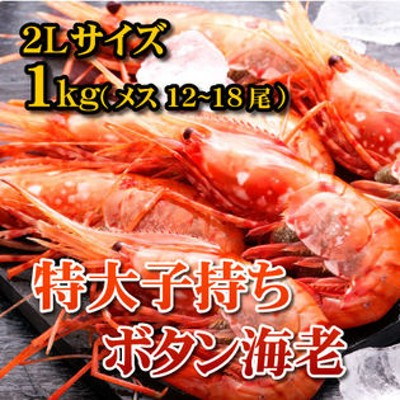 【1kg(12-18尾)】特大子持ちボタン海老2Lサイズ メス