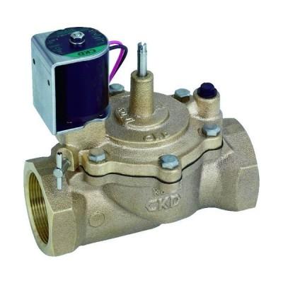 CKD 株 CKD 自動散水制御機器 電磁弁 RSV-20A-210K-P 期間限定 ポイント10倍
