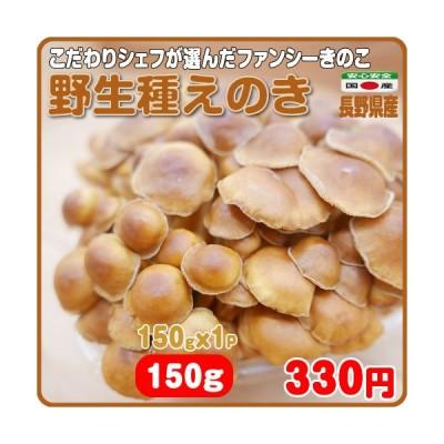 食欲の秋に活力溢れるファンシーなえのき 野生種えのき 1パック 150g 長野県産