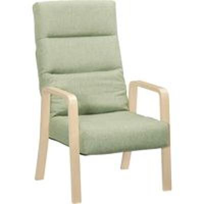 タマリビングタマリビング 高座椅子 コザト ハイタイプ GN グリーン 50001965 1脚(直送品)