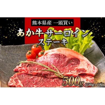 熊本の和牛 あか牛 サーロイン ステーキ 250g×2枚 500g 熊本県産 肉 和牛 牛肉 赤牛 あかうし《30日以内に順次出荷(土日祝除く)》