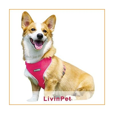 LivinPet No-Choke Dog Vest Harness w/Reflectieve Accents, D-Ring, Adjustable Straps and Quick-Release Buckles for Girl/Boy Puppies of Small/Medium/Lar