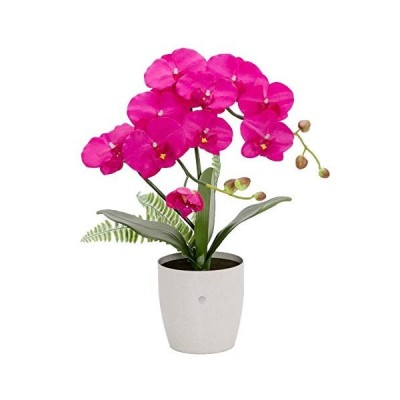 Formosaflowers ( フォルモサ フラワーズ )胡蝶蘭(鉢型) 光るLEDフラワーライト/造花 アーティフィ
