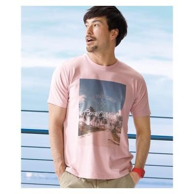 個性豊かな転写プリント刺しゅう入半袖Tシャツ メンズ M-10L 刺しゅうでロゴを入れた凝ったデザインTシャツ 大きいサイズ メンズ トップス ニッセン