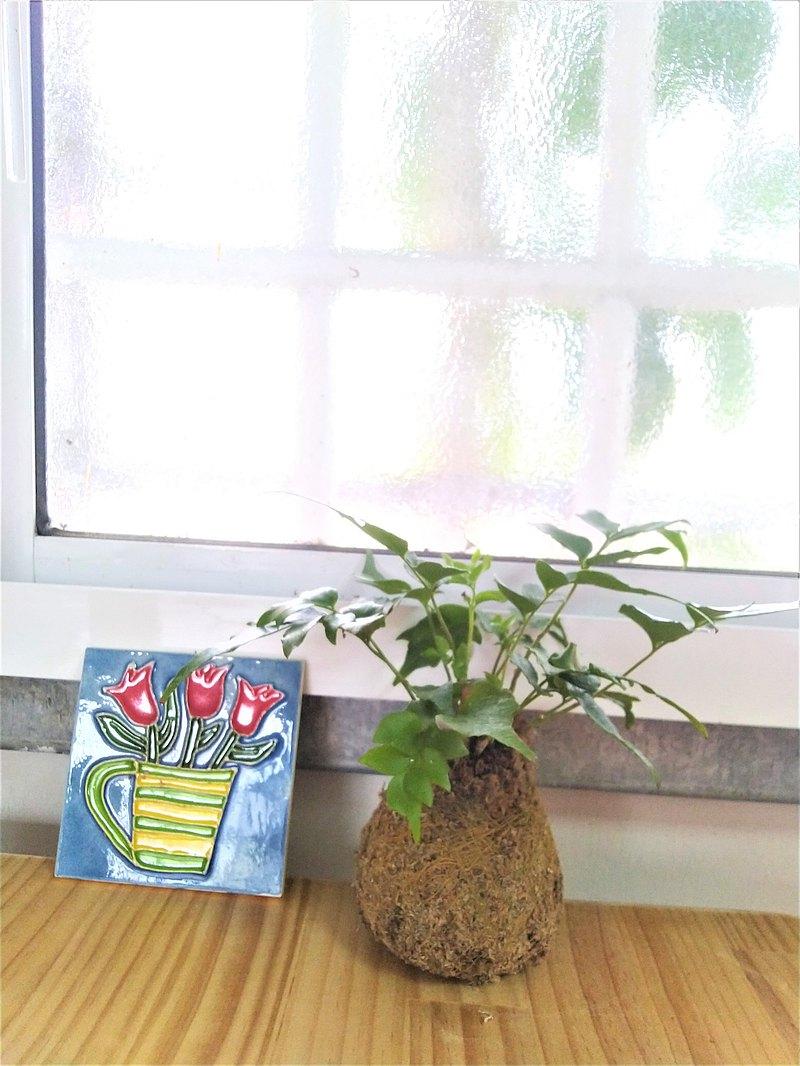 【開館特賣&限量組合】室內苔球_冬青蕨+手繪絕版花磚底座