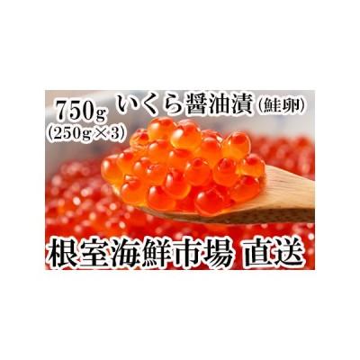 ふるさと納税 いくら醤油漬(鮭卵)250g×3P(計750g) B-11012 北海道根室市