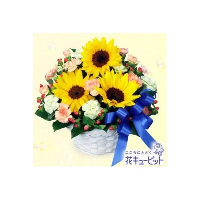 誕生日フラワーギフト 花 ギフト 誕生日 プレゼント花キューピットのひまわりとブルーリボンのアレンジメント