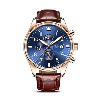 Swiss Watch Men's Complex Function Analog Automatic Mechanical Watch Stainless Steel Luminous Watch (Leather Band-Rose Gold Blue) 並行輸入品
