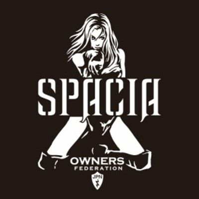 カッティングステッカー スズキ(SUZUKI)スペーシア SPACIA bondage 車 カー ステッカー アクセサリー シール ガラス[◆]