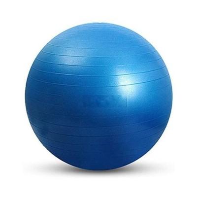 ブルー/55 バランスボール45cm/55cm/65cm/75cmヨガボール アンチ