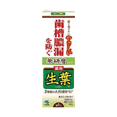 生葉m 無研磨タイプ ハミガキ 95g 小林製薬