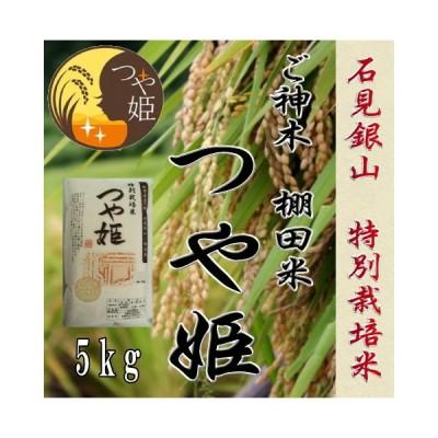令和2年産 お米5kg / 石見銀山棚田米ご神木米 つや姫 特別栽培米 1等米
