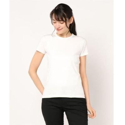 tシャツ Tシャツ 【YOUNG & OLSEN The DRYGOODS STORE】フレンチTシャツ WOMEN