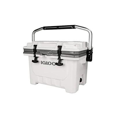 Igloo(イグルー) クーラーボックス IMX 24 (約22L) アウトドア 釣り 00049829 ホワイト
