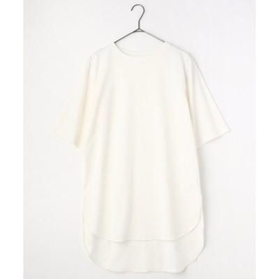 tシャツ Tシャツ オーガニックコットンBIG T