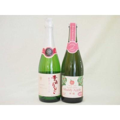 国産林檎スパークリングワイン2本セット(やや甘口)(青森県 長野県) 720ml 750ml