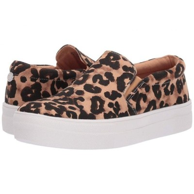 スティーブ マデン Steve Madden レディース スニーカー シューズ・靴 Gills-A Sneaker Leopard