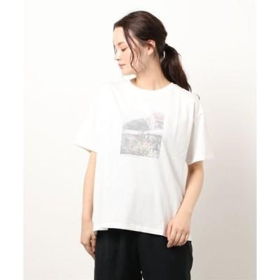 tシャツ Tシャツ フォトプリントTシャツ(グラフィック)