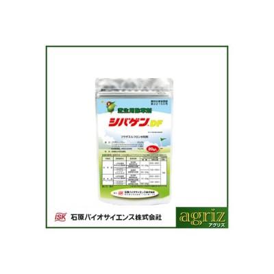 除草剤 シバゲンDF 100g (芝用 除草剤) ゴルフ場 芝生 雑草防除 日本芝 西洋芝 バーミューダグラス センチピードグラス
