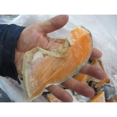 塩銀鮭のカマ 身がたっぷりついています!