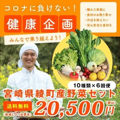 綾町野菜セット 6回便 10種類 毎週または隔週お届け 送料無料