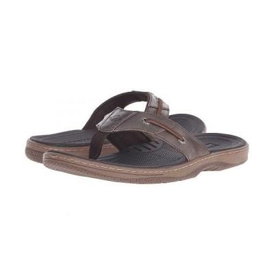 Sperry スペリー メンズ 男性用 シューズ 靴 サンダル Baitfish Thong - Brown