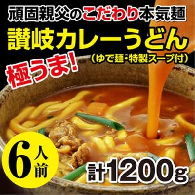 【6人前】本場讃岐 カレーうどん だし付!こだわり本気麺
