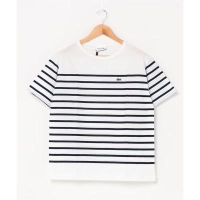 tシャツ Tシャツ リップルボーダージャージTシャツ
