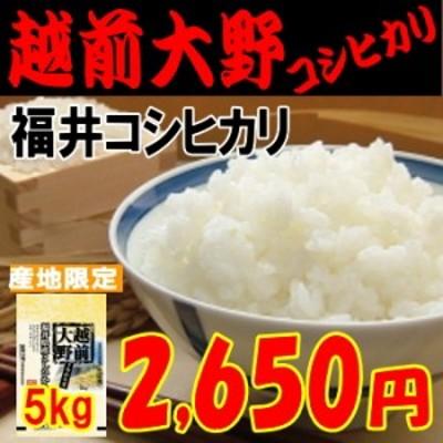 越前大野コシヒカリ(福井コシヒカリ)5kg もっちり・甘め 米/お米/30/程よい味 玄米,白米,分搗き選択可能