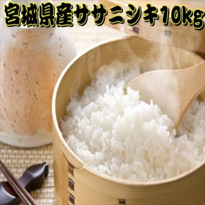 新米 米 10kg 白米 ササニシキ 一等米 宮城県産 令和2年産 5kg×2袋