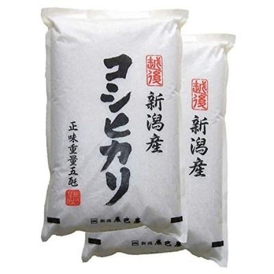 精米新潟県産コシヒカリ 白米 10kg(5kg×2袋)令和2年産 新潟辰巳屋(産地直送米)… (10kg)